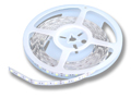 Cool White Indoor Single Density LED Strip