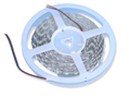 Cool White Indoor Double Density LED Strip