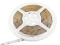 Color RGB Warm White Indoor Double Density LED Strip